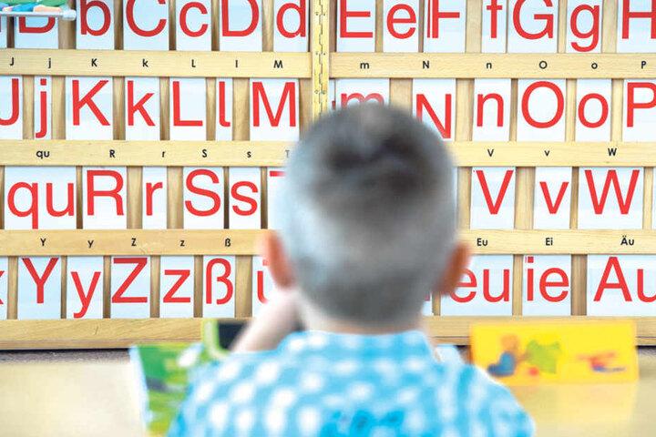"""365 Kindergärten in Sachsen sind """"Sprach-Kitas"""", in denen mit Erzählen,  Bilderbüchern und Liedern das Sprachvermögen der Kleinen verbessert werden  soll."""