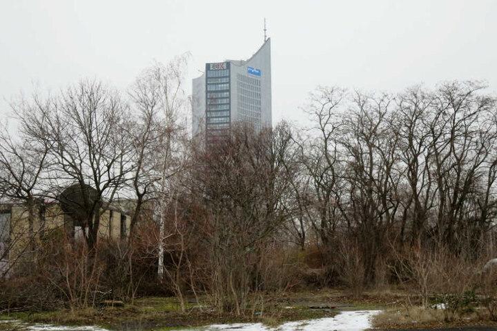 Der Wilhelm-Leuschner-Platz, heute noch Brutplatz für zahlreiche Vögel, soll demnächst bebaut werden.