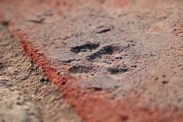 Der steinalte Abdruck einer Katzenpfote wurde jetzt in der Kirche  entdeckt.