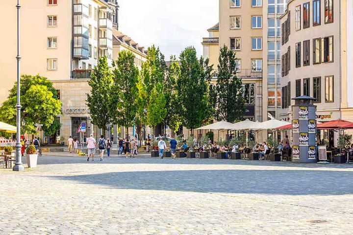 """Hier wird der Neumarkt vollendet: Dort, wo heute eine Baumgruppe steht, befand sich bis 1945 das Hotel """"Stadt Rom""""."""