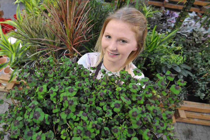 Glücksklee hilft immer! Sophie Ludwig (19) zeigt beim Gartenfachmarkt Richter ein ganzes Beet voll Glück.