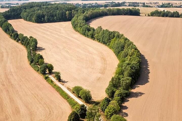 Durch die anhaltende Trockenheit sind in Sachsen auch viele Brunnen und Quellen versiegt.