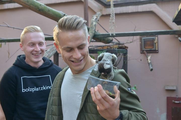 Die FCE-Spieler Luke Hemmerich (20, links) und Sascha Härtel (27) besuchten ihr Patentier, ein Weißbüscheläffchen.