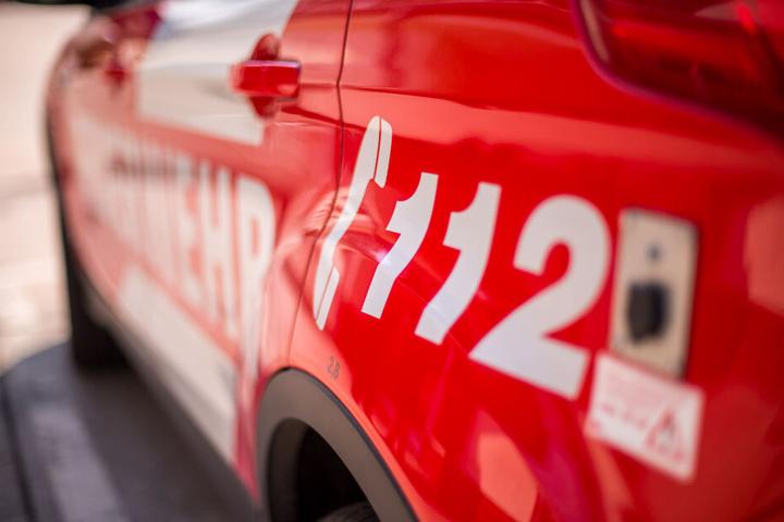 Die beiden Bewohner und auch ein Feuerwehrmann wurden verletzt. (Symbolbild)