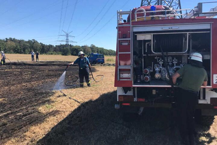 Etwa 500 Quadratmeter des Feldes brannten ab.