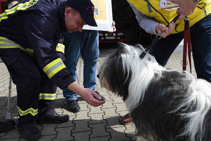 Jetzt bedankte sich Herrchen Rupert Hunzelmann bei den Kameraden der  Feuerwehr, dass sie Milo das Leben retteten.