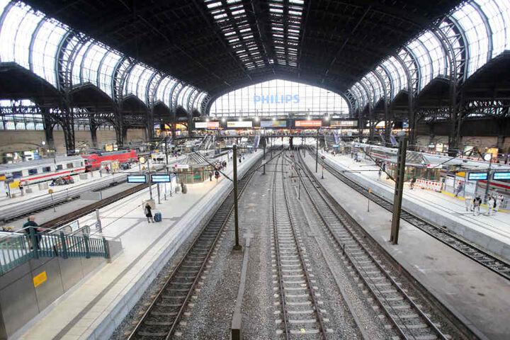 Wie der Mann unter das Dach des Hauptbahnhofes gekommen ist, konnte er nicht sagen.