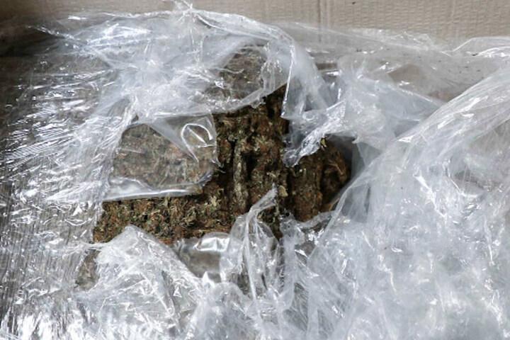 Die Ermittler fanden 30 Kilogramm Marihuana bei den Durchsuchungen.