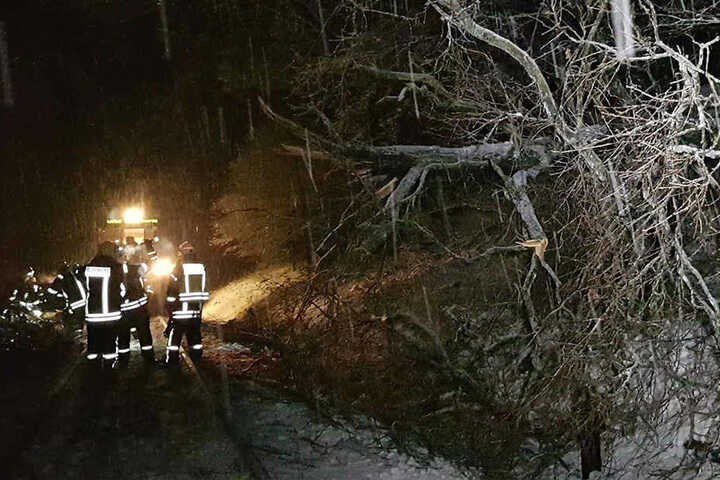 Feuerwehrleute vor Ort räumen die Strecke frei.