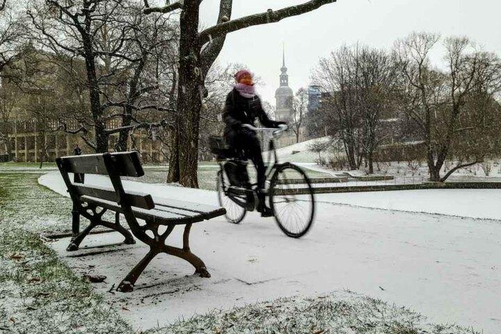 Am Zwingerteich in Dresden sah es schön weiß aus.