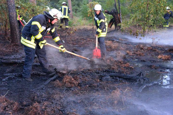 Mit Schüppen lockerten die Einsatzkräfte den Boden, damit das Wasser einsickern konnte.