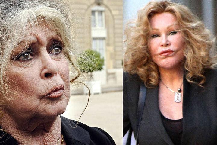 Jocelyn Wildenstein (re.) meint, sie ähnele Brigitte Bardot (li) aufs Haar.