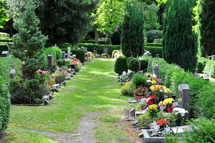 Auch Friedhöfe können lebendige Orte sein.