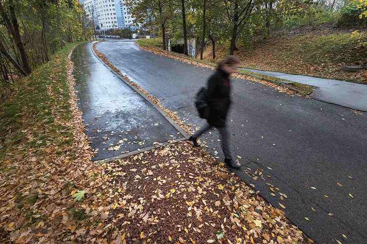 """Dieser Gehweg soll Fußgänger vor """"gefährlichem Mischverkehr"""" schützen - aber  nur für 42 Meter."""