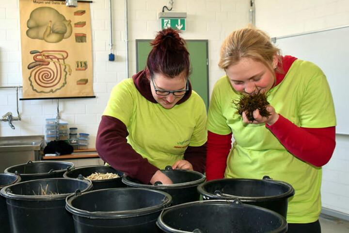 Die Wettbewerbs-Teilnehmerinnen Vanessa Wendler (l.) und Maria Zöphel müssen in diesen Trögen Futterzutaten wie Grassilage und Haferschrot erkennen und über ihre Verwendung Bescheid wissen.