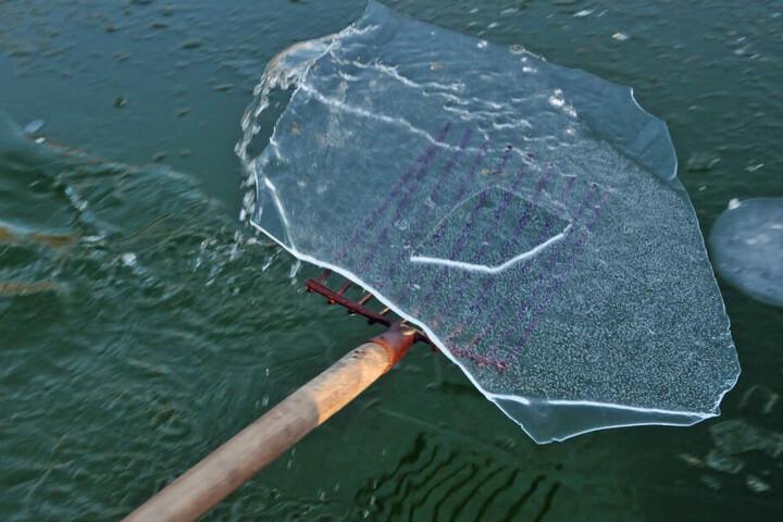 Vor dem Badevergnügen musste in Oederane eine zwei Zentimeter dicke Eisdecke entfernt werden.