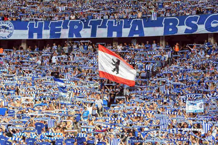 Hertha BSC will raus aus dem Olympiastadion.