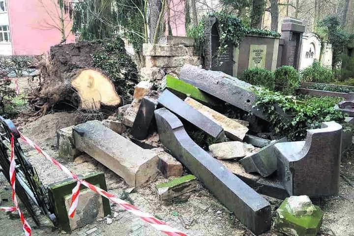 """""""Friederikes"""" Fluch: Von diesem großen Familiengrab im herrlichen Waldfriedhof auf dem Weißen Hirsch blieb nur noch ein Trümmerhaufen!"""""""