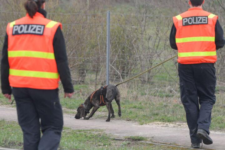 Ein Polizeihund wird zur Suche nach der vermissten Rebecca aus Berlin an der Abfahrt der Autobahn 12 in Fürstenwalde im Landkreis Oder-Spree eingesetzt.