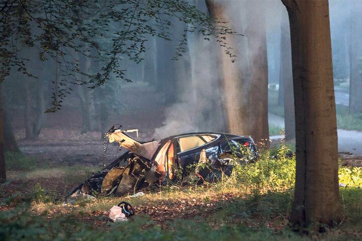 Ein brennendes Elektroauto im Wald - wird jetzt falsch reagiert, könnte sich der Brand schnell ausbreiten.