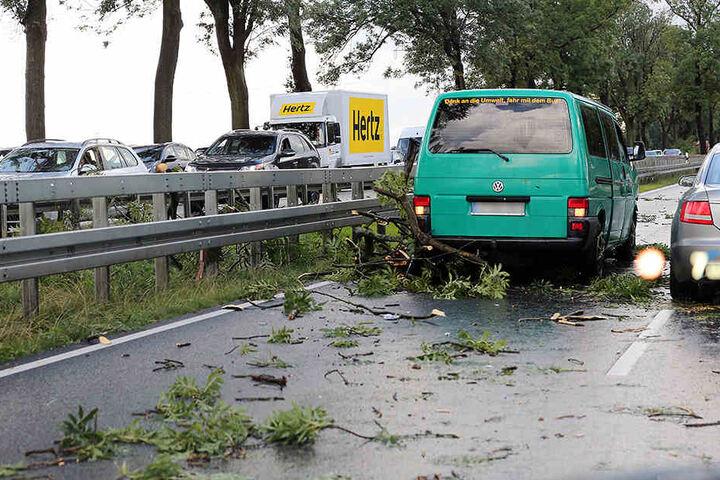 Nach Starkregen und starken Winden behindern umgestürzte Bäume und abgebrochene Äste auf der Bundesstraße 1/5 in Höhe Hoppegarten den Feierabendverkehr.