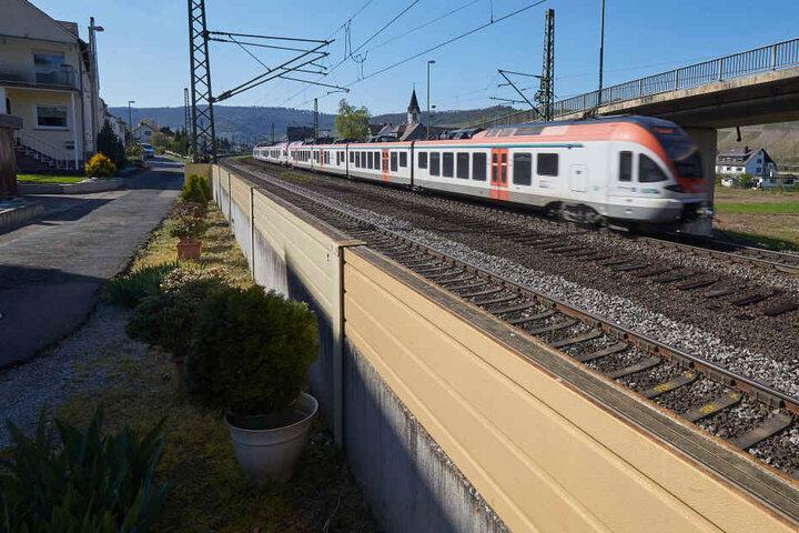 Ein Zug fährt im Rheintal an einer direkt am Gleisbett platzierten niedrigen-Lärmschutzwand vorbei. Die Deutsche Bahn hat im vergangenen Jahr rund 500.000 Euro in Lärmschutzmaßnahmen in Rheinland-Pfalz investiert.