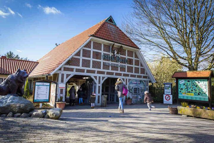 Wildpark Lüneburger Heide: Hier ist das neue Zuhause vom kleinen Wolf.