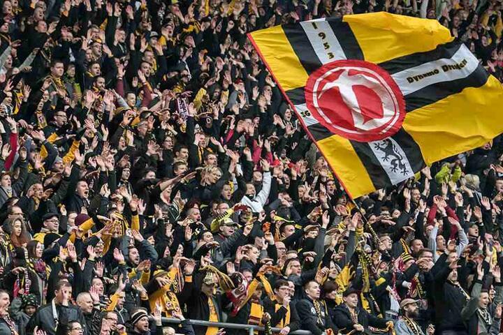 Dynamofans werden im Wildparkstadion unter sich sein.