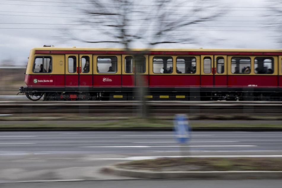 Der S-Bahn-Verkehr auf der Linie 7 musste kurzzeitig unterbrochen werden. (Symbolbild)