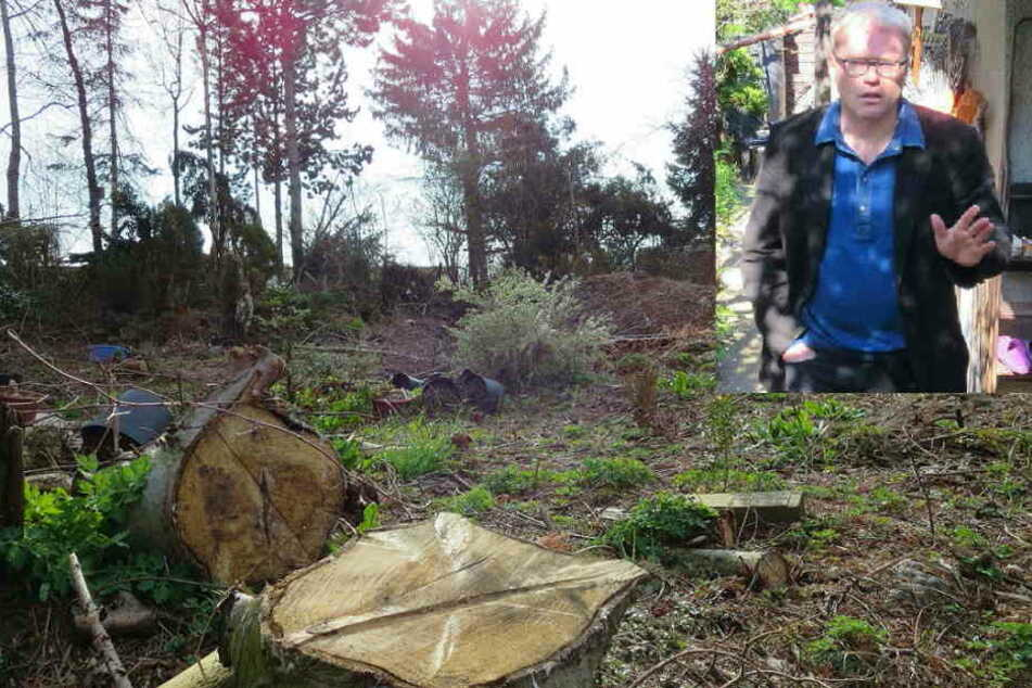 Ein zerstörtes Biotop - und ein Pfarrer, der es mit der Bewahrung der Schöpfung offenbar nicht ganz so ernst nimmt, Konrad Taut (kl. Foto).