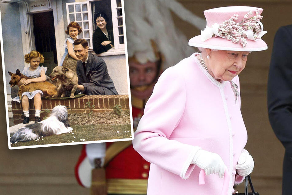 The Queen would apparently rather walk the dogs than speak with Harry on her 95th birthday