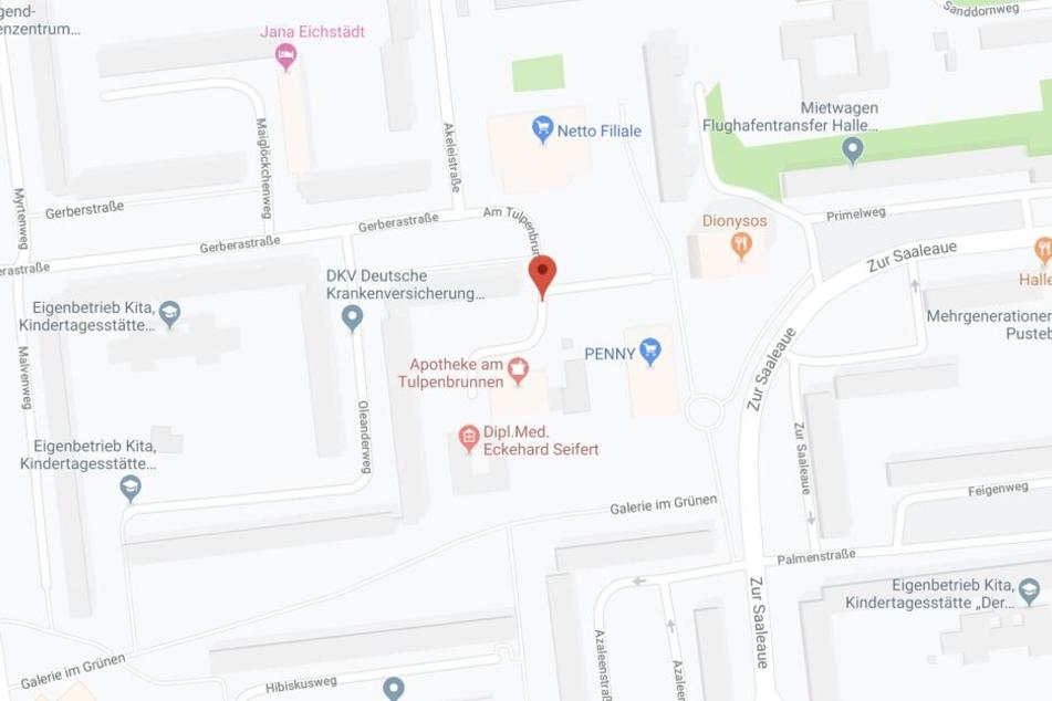 Die Attacke ereignete sich am Tulpenbrunnen in Halle-Neustadt.