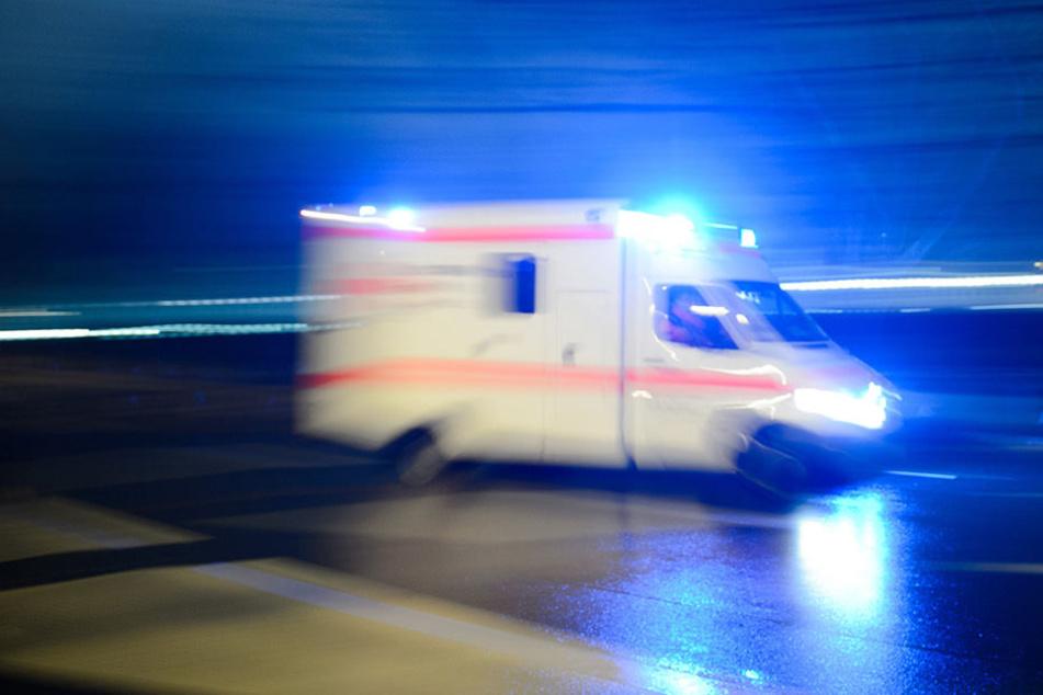 Der 73-jährige Hanauer überlebte den schweren Unfall nicht.