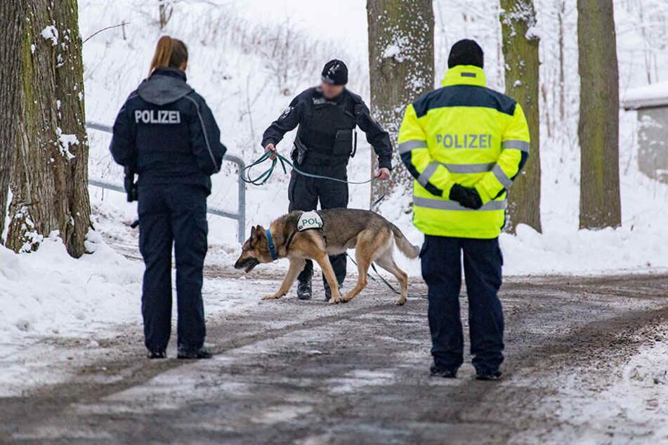 Neben Kriminaltechnikern und Brandursachenermittlern kam auch ein Fährtensuchhund zum Einsatz.