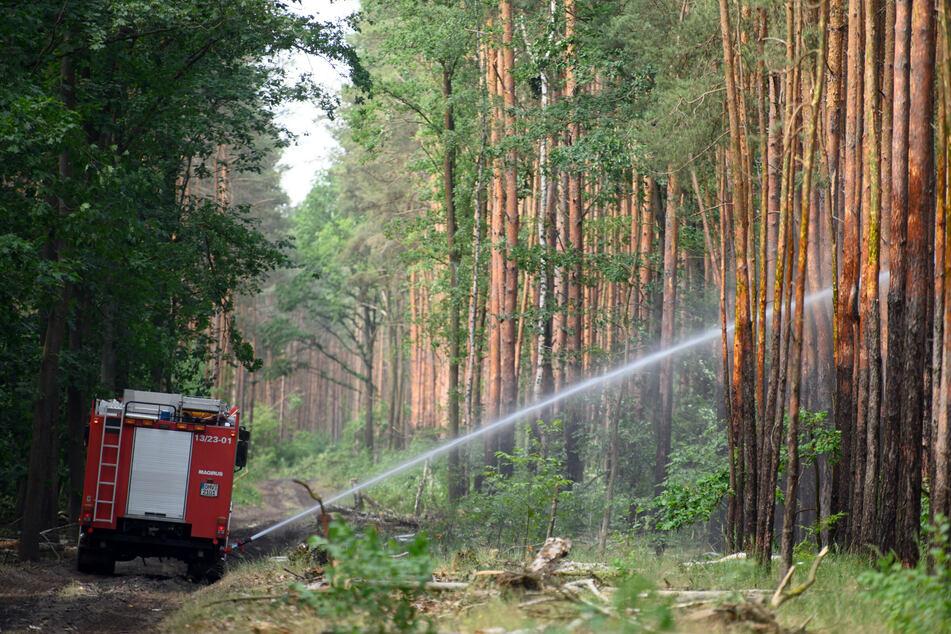 Tanklöschfahrzeuge umkreisen weiter das Brandgebiet und kontrollieren Glutnester.