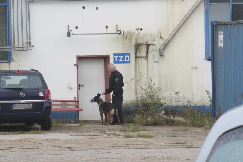 Auch dieser Hintereingang wurde von einem Hundeführer gesichert, damit niemand aus der Halle flüchtet.