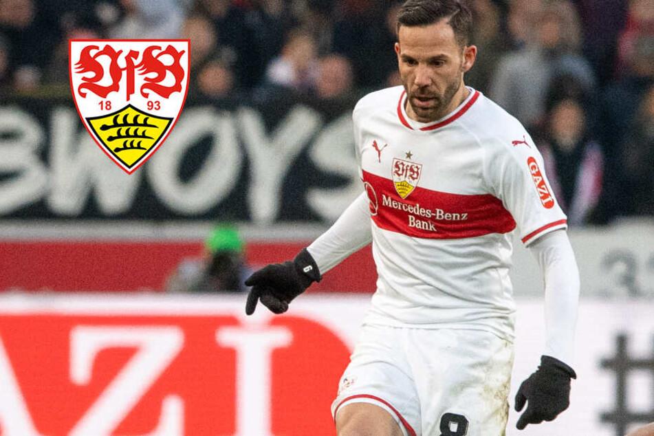 Aufwind beim VfB Stuttgart: Der Faktor Gonzalo Castro