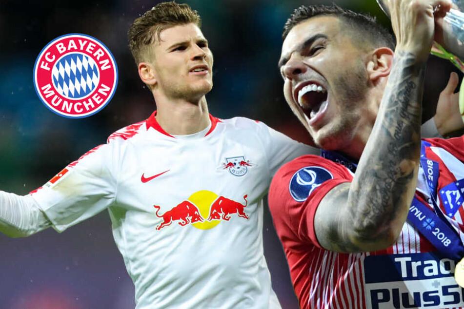 Medienberichte: Wechsel von Timo Werner und Lucas Hernandez zum FC Bayern so gut wie sicher