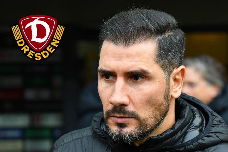 Dynamo trennt sich von Trainer Cristian Fiel