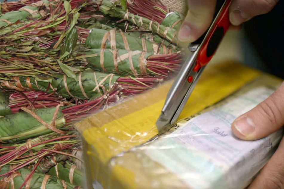 Drogen per Post verschickt: Zoll entdeckt 64 Kilogramm Khat