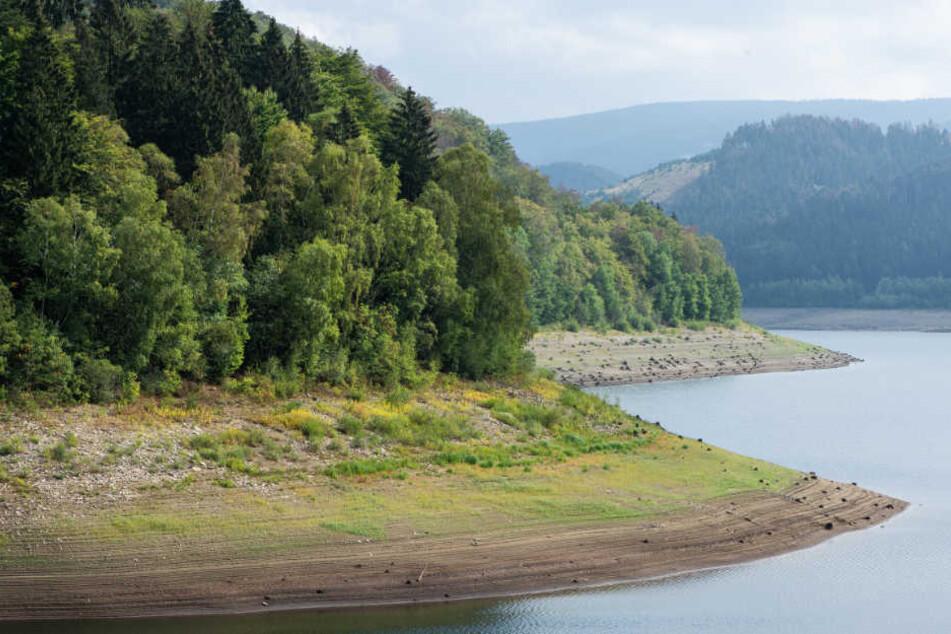 Der Sösestausee ist bereits zu zwei Dritteln leer. Die Harzwasserwerke denken über neue Speichermöglichkeiten nach.