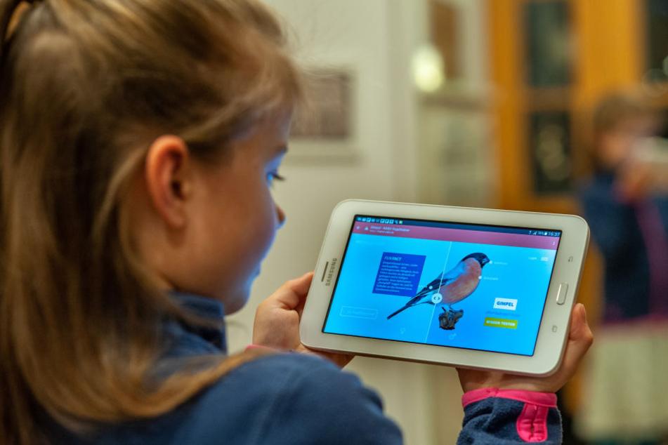Elisa (7) probiert schon mal die App aus, mit der ab morgen wieder die Vögel gezählt werden.