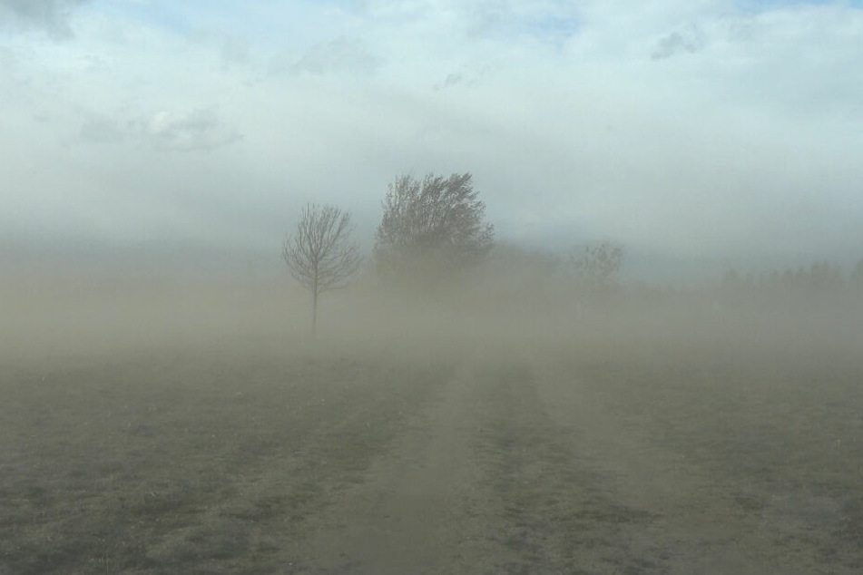 Naturschauspiel in der Altmark: Ein heftiger Sandsturm fegte am Montagnachmittag mit 80 bis 100 km/h über die Felder am Stadtrand von Gardelegen.