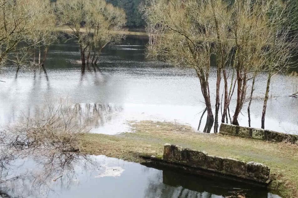 Hochwasser-Alarm! Regen und Tauwetter bringen Gefahr