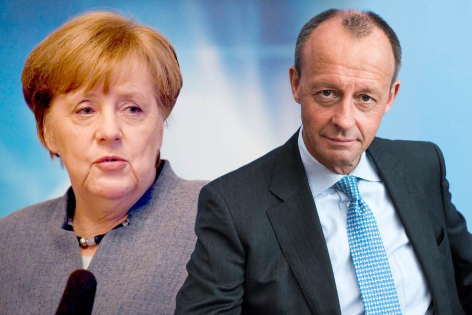 Merz will Merkel unterstützen, falls er gewählt wird