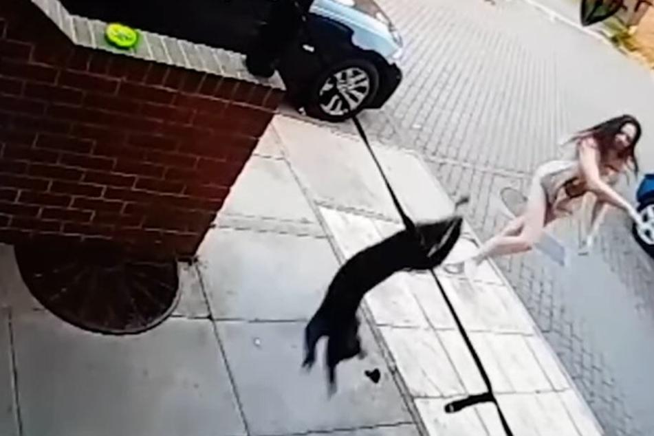 Unfassbar: Frau dreht durch und wirft Katze gegen Haustür