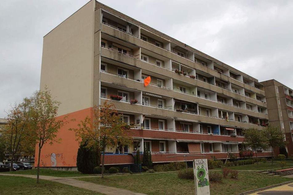 Vom Balkon im vierten Stock (ganz links) wurde das Tier geworfen.