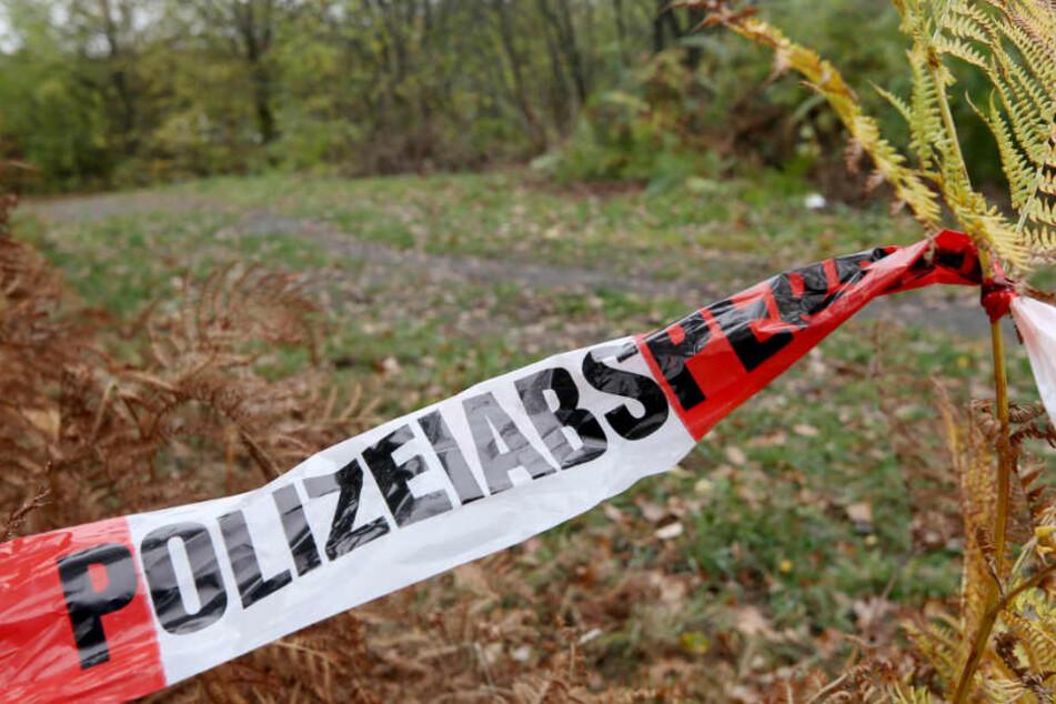 In einem Waldstück in Hasbergen wurde die Leiche gefunden. (Symbolbild)