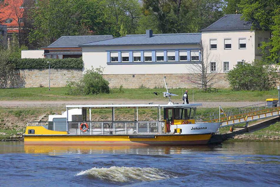 Auch die Fährleute der Dresdner Fähren sind zum Warnstreik aufgerufen.