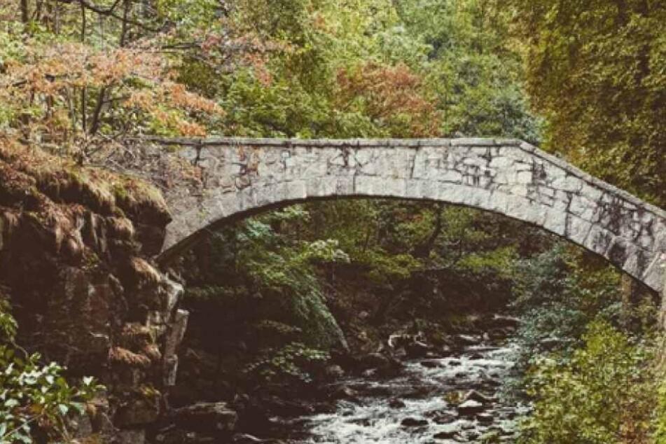 Thale im Harz überzeugt mit seiner atemberaubenden Natur.